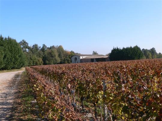 chateau-cantelys-propriete-pessac-leognan
