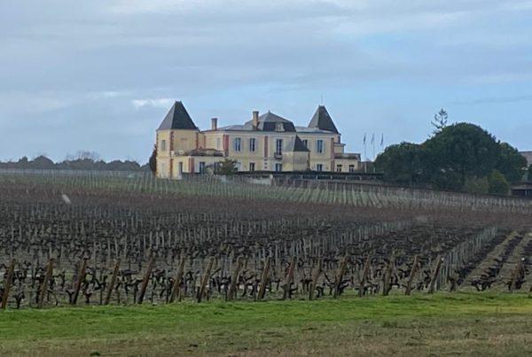 vins-pessac-leognan-l-apprenti-sommelier-chateau-de-france-vignes-4