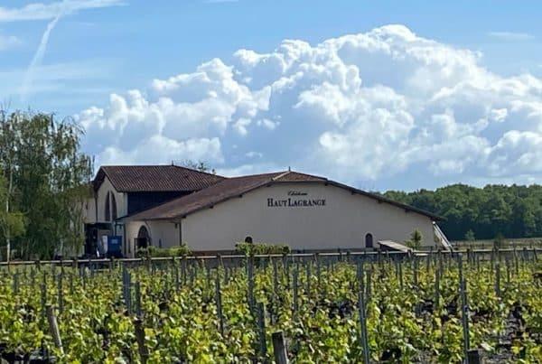 vins-pessac-leognan-l-apprenti-sommelier-actualités-chateau-haut-lagrange-visite-vigne-vignes-vignoble-chai-raisin-barrique-67